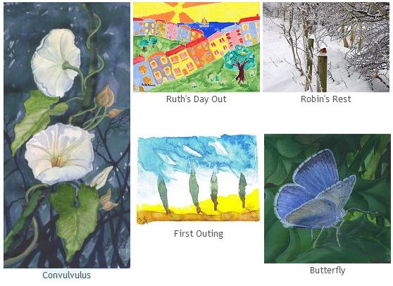 The Butterfly Garden gift cards
