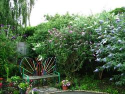 The original garden at The Butterfly Garden. A project for people of all ages dealing with disablement of any kind.